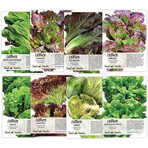 Seed Needs, Lettuce Lovers Seed Collection (8 Individual Packets) Non-GMO ()