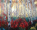 Real Hand Painted Birch Tree and Lavender Fields Canvas Oil Painting for Home Wall Art Decoration, Not a Print/ Giclee/ Poster, Framed, Ready to Hang