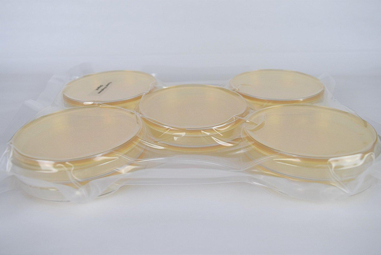 Yeast Peptone Dexrose Agar (YPD) Pre-Poured, Flat-Packed, Vacuum Sealed Petri Plates (10-Pack)