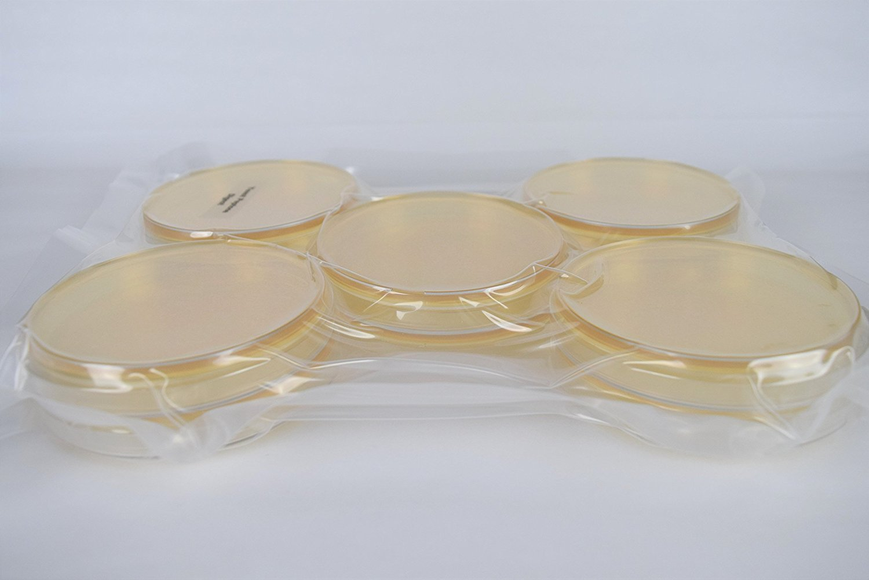 Yeast Peptone Dexrose Agar (YPD) Pre-Poured, Flat-Packed, Vacuum Sealed Petri Plates (10-Pack) by Diamante Scientific