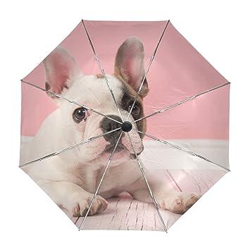 ALAZA Viajes Cachorro de Bulldog Francés Paraguas de Apertura automática Cerca de Protección a Prueba de