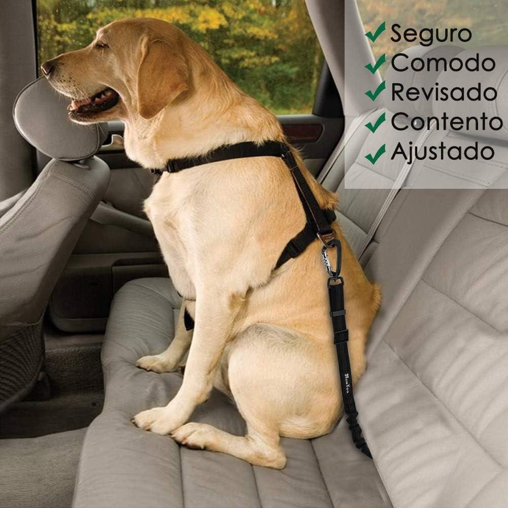 SlowTon Cinturón Perro Coche, Mascotas Cinturón de Seguridad para ...