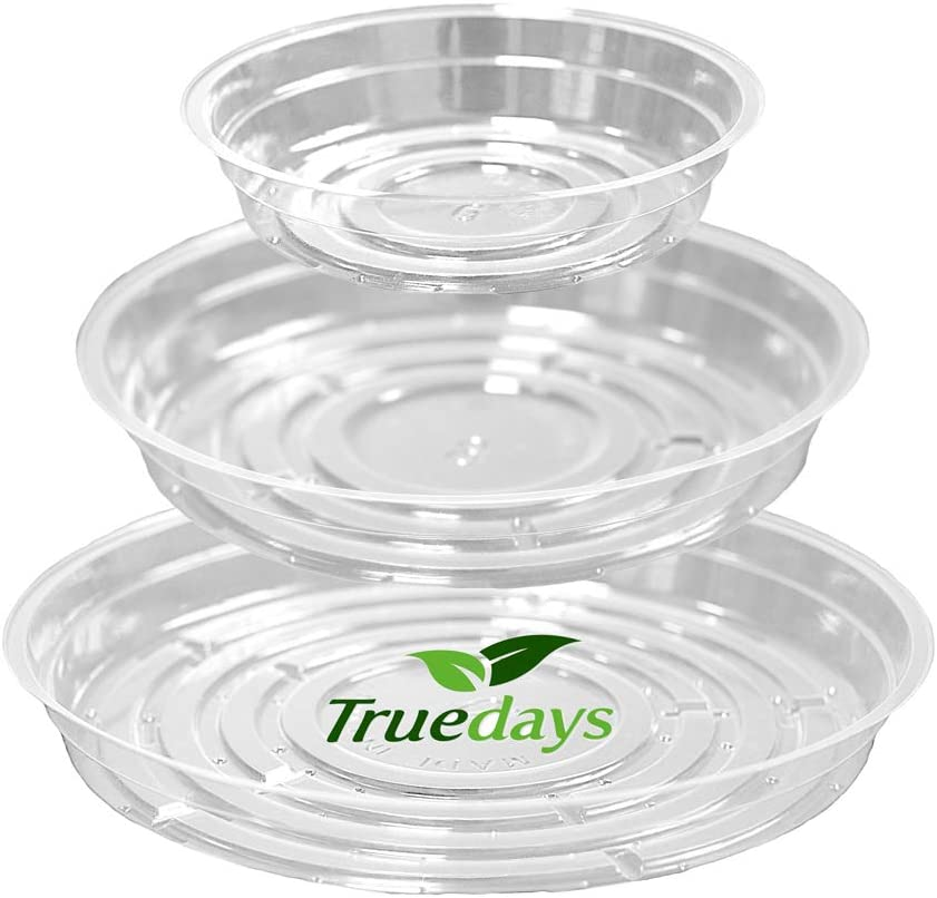 Deep Plant Saucer 5-Pack 6-in Clear Plastic Planter Pot Tray