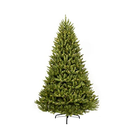 5add1de135d Image Unavailable. Image not available for. Color  Puleo International 9-Foot  Pre-Lit Fraser Fir 1000 UL Clear ...