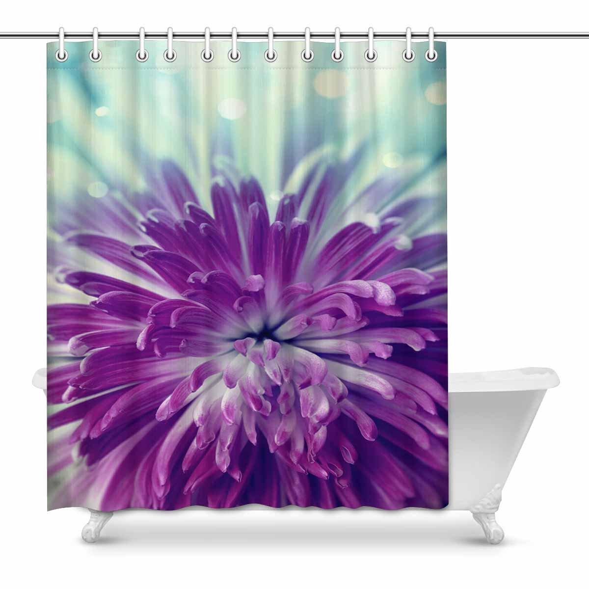interestprint明るいシームレスなグランジカラフルエスニックBlots 花びら 葉と花ファブリック浴室シャワーカーテンフック付きインテリアセット 60 W x X 即納 inches B07BF8HHK4 マルチ2 72 72l 公式