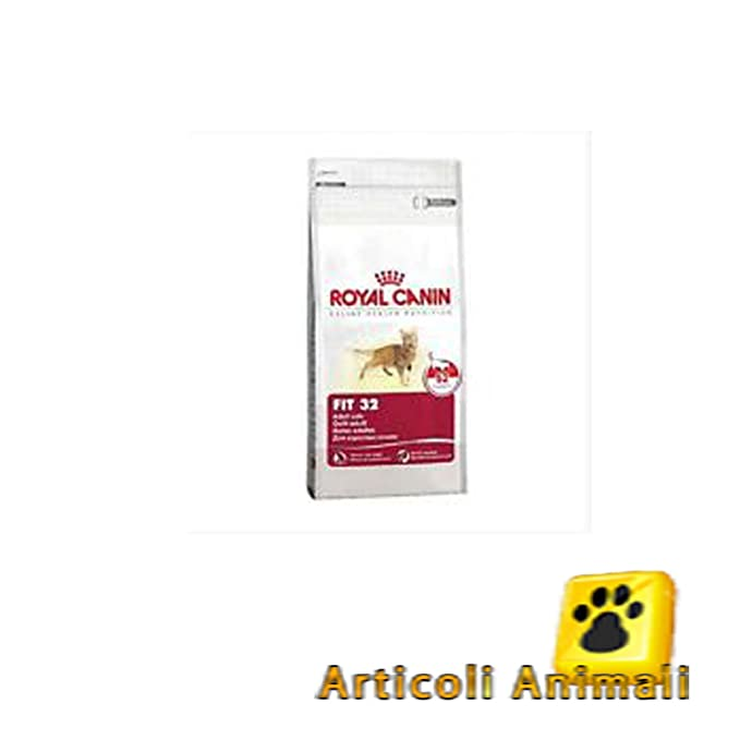 Royal canin Fit 32 pienso para gatos