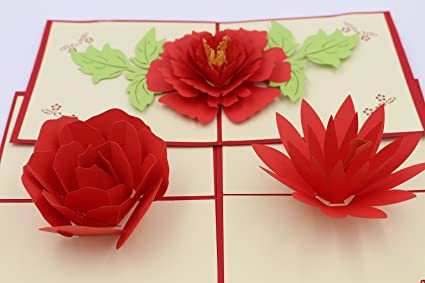 Amazon Com Guchina Peony Rose Lotus 3d Pop Up Greeting Card