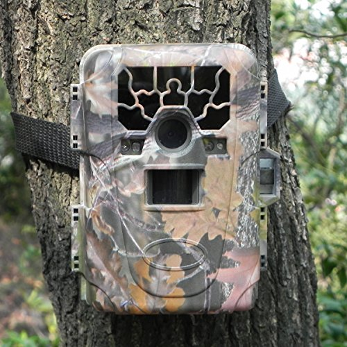 GemTune HD Waterproof IP66 Infrared Night Vision Game Trail Hunting Scouting Ghost Camera Take 12MP Image 1080p Video From 75feet/23m Distance(SG-880V) by GemTune