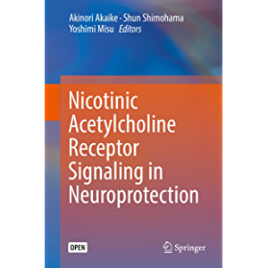Nicotinic Acetylcholine Receptor Signaling in Neuroprotection