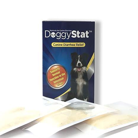 Amazon.com: DoggyStat Fast Diarrhea Alivio para Perros que ...