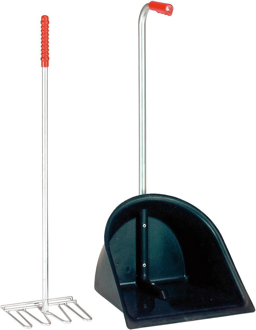 PFIFF Saubermann - Recogedor con rastrillo