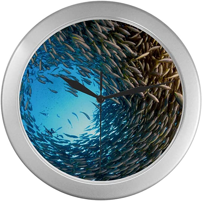 Amazon Com Wall Clock For Living Room Coral Reef Sea Fish Girls Clocks For Bedrooms Wall 9 65 Inch Silver Quartz Frame Decor For Office School Kitchen Living Room Bedroom Home Kitchen