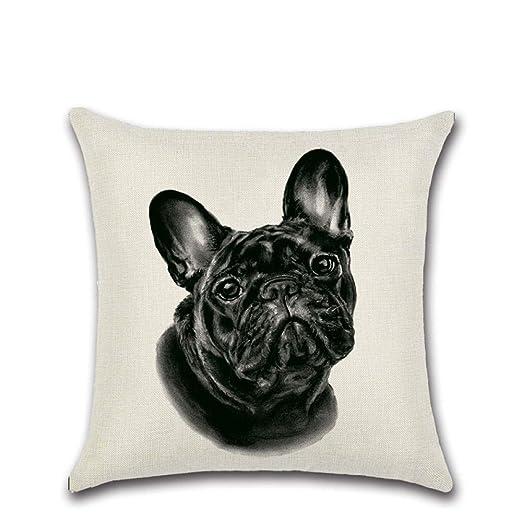 CYYYjz Página de Inicio Lindo Meng Bulldog francés Perro ...