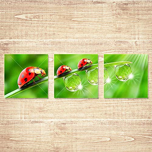 (DIY 5D Diamond Painting Kit for Adults, YINASI Full Drill Square Diamond Embroidery Cross Stitch Picture Arts Craft for Home Wall Decoration, 3 Panels of Ladybug and Green Leaves Wall Art Decor)
