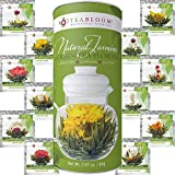 Teabloom Flowering Tea Balls - 12 Assorted Blooming Tea Flowers with Natural Jasmine