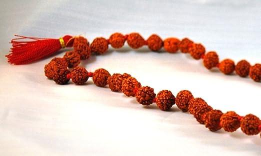 Auténtico Rudrakasha Yoga Mala (108 - cuentas en un hilo con ...