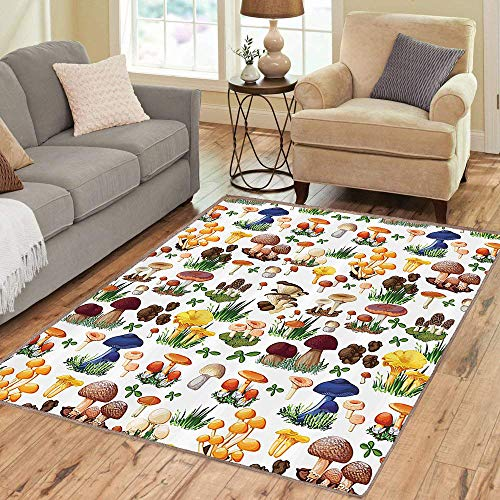 (Rug,FloorMatRug,Mushroom Stall,AreaRug,Pattern with Types of Mushrooms Wild Species Organic Natural Food Garden Theme,Home mat,2'x3'Multicolor,RubberNonSlip,Indoor/FrontDoor/KitchenandLivingR)