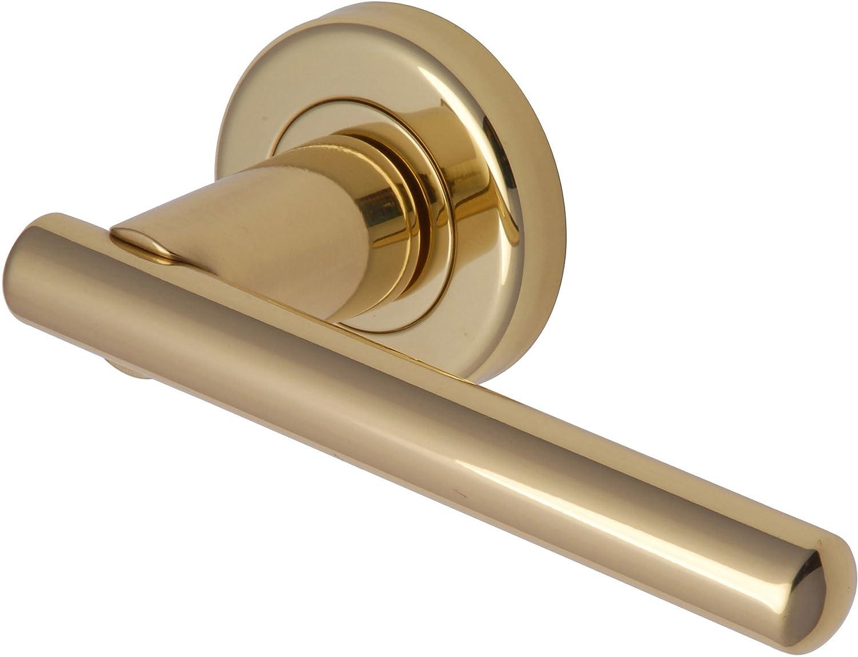 Transitions EB1001-PB-01 Challenger Poign/ée de porte en laiton poli Finish Polished Brass