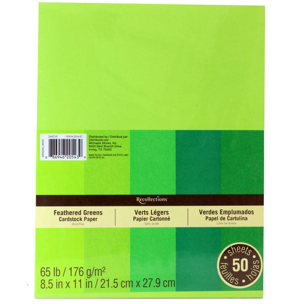 Recollections Cardstock Paper, 8 1/2 X 11 Feathered Greens - 50 Sheets by Recollections 264210