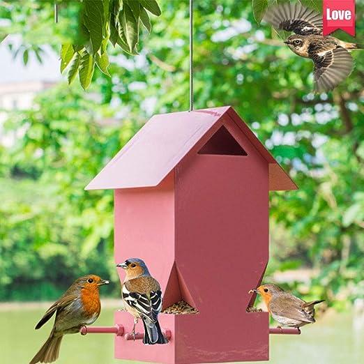 Rosado Metal Comedero para pájaros Al Aire Libre Salvaje Pájaro Casa Decorativo Comida Envase Adecuado para Casa Jardín Balcón Decoración: Amazon.es: Hogar