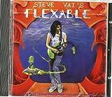 Flex-Able by VAI,STEVE