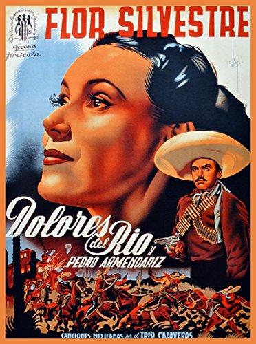 - Quality Poster.Flor Silvestre.Dolores del Rio Mexican Movie