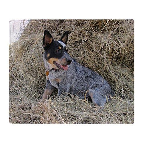 CafePress Australian Blue Heeler Pup Soft Fleece Throw Blanket, 50