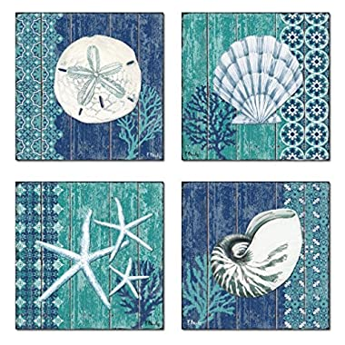 4 Lovely Blue and Teal Ocean Seashell Sand Dollar and Star Fish Poster Prints; Four 12 x 12 Poster Prints