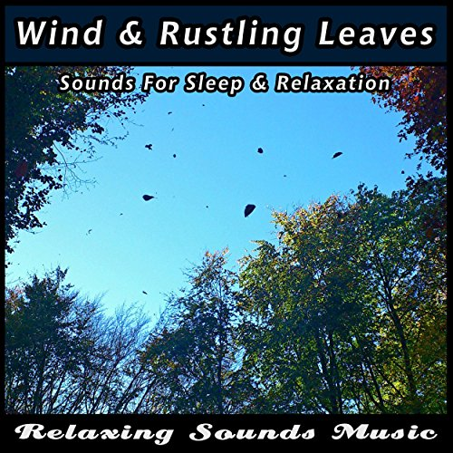 Wind and Rustling Leaves for Sleep and Relaxation