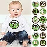 Woodland Creatures - Baby Boy Monthly Sticker Set - Baby Shower Gift Ideas - 12 Piece
