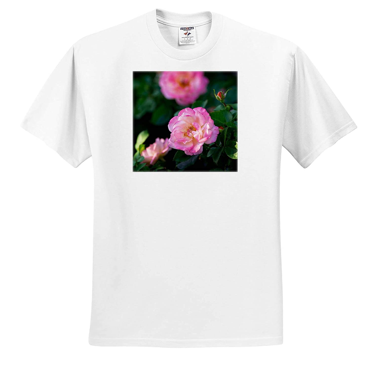 3dRose Alexis Photography Summertime in The Green Garden Beautiful Pink Rose Flower on a Bush T-Shirts Flowers Roses