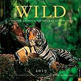 Download Wild 2019 Wall Calendar: Untamed Animals, Untouched Landscapes Pdf Epub Mobi
