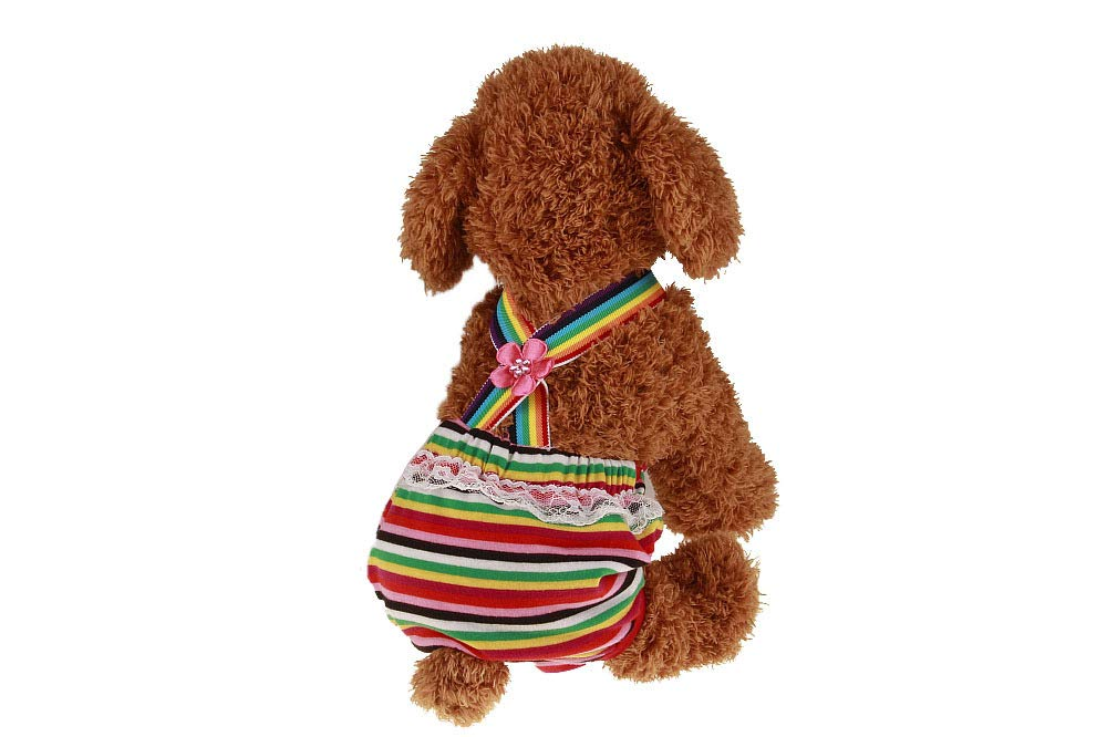 KayMayn Dots igiene Pantaloni Sanitari Pet Dog fisiologico Pannolino Pant Og Sanitari Pantaloncini Mutandine Slip mestruali