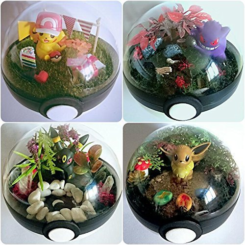 Custom Pokemon Pokeball Terrarium Diorama Miniature Landscape Gen 1