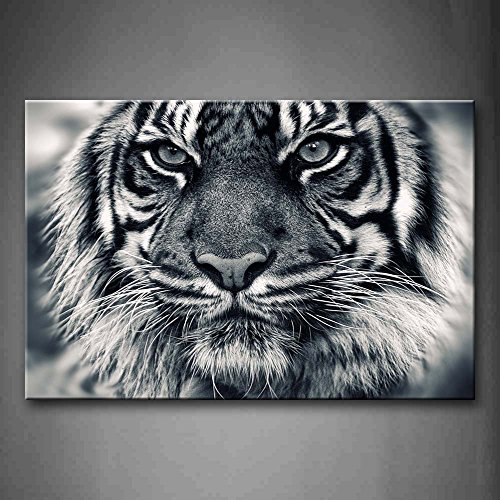 First Wall Art - Black And White Ferocity Tiger With Eye Staring And Beard Wall Art Painting Pictures Print On Canvas Animal The Picture For Home Modern (Tiger Eye Horse)