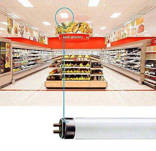 (6 Pack) F17T8/841 17W 24 Inch T8 Fluorescent Tube Light Bulb, 4100K Cool White, Medium Bi-Pin (G13) Base, 17 Watt T8 Light Bulbs by Circle (Image #3)