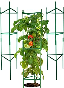 YOHEER Tomato Cages,3 Packs Assembled Garden Plant Support Stakes, Vegetable Trellis for Vertical Climbing Plants, 4 Feet High Adjustable Stake Arms.