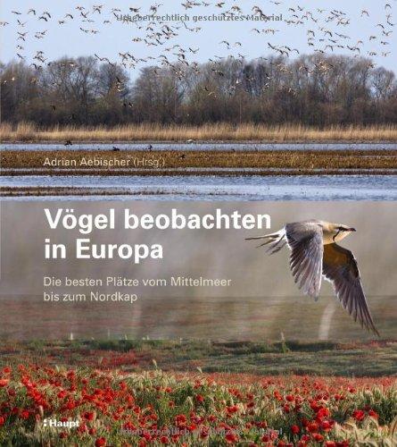 Vögel beobachten in Europa: Die besten Plätze vom Mittelmeer bis zum Nordkap