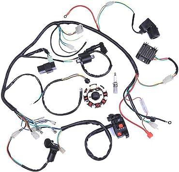 Amazon.com: Wiring Harness kit Wire loom | Complete Electrics Stator Coil  CDI for 150cc-300cc ATV QUAD 4 Four wheelers Go Kart Dirt Pit bikes (2  fixing holes): AutomotiveAmazon.com