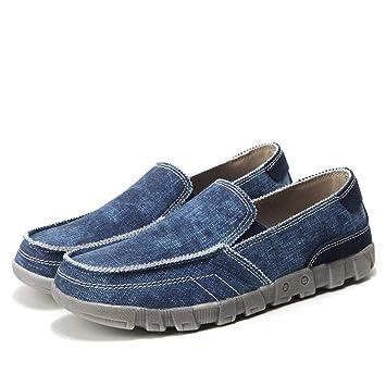 ZHRUI Zapatillas sin Cordones para Hombre con Alpargatas Respirables (Color : Azul, tamaño : EU 45): Amazon.es: Hogar