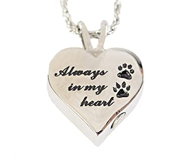 plated boxed cat gift necklace dp paw dog silver lockets equilibrium locket print