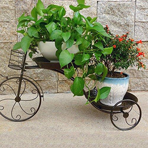 miglior reputazione WXL Flower Frame Iron Art multipiano tipo di bicicletta piano piano piano tipo A soggiorno balcone cornice stile europeo (colore   Coppery, dimensioni   L69CMW26CMH39CM)  prezzo basso