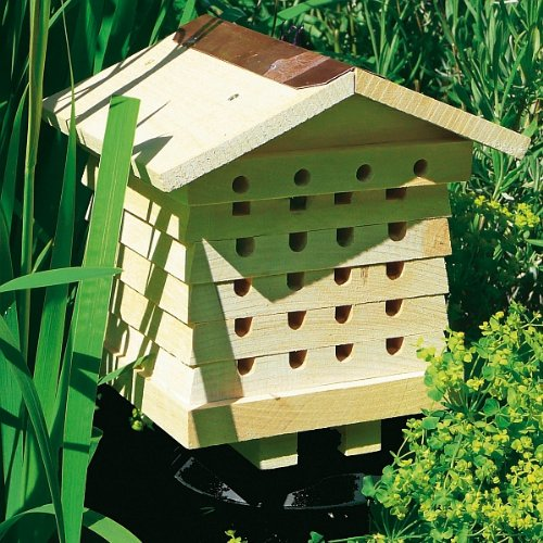 Beckmann-WWL-Ruche-pour-abeilles-solitaires