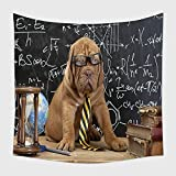Home Decor Tapestry Wall Hanging Young Cute Dog In Front Of Blackboard During A Math Class Dogue De Bordeaux Puppy French Mastiff 186177059 for Bedroom Living Room Dorm