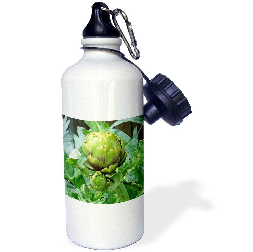 21 oz White 3dRose wb/_4231/_1Artichoke Sports Water Bottle