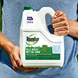 Roundup for Lawns 4 Refill (Southern), 1