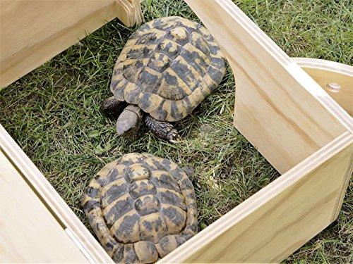 Tortuga deluxe casa rifugio per tartarughe di terra for Terrario per tartarughe di terra giardino
