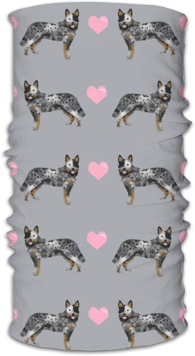 Mascarilla unisex multifuncional para perro ganado australiano azul Heeler Love Hearts Bandanas grises, deportivas y casuales, para el cuello, pasamontañas, pañuelo para la cabeza