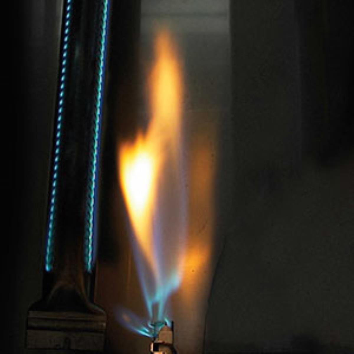 amazon com napoleon p308pss 7 prestige propane grill