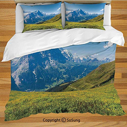 (Nature Queen Size Bedding Duvet Cover Set,Peaks of Swiss Alps in Sunny Summer Day Flowers Valley Nothern Rural Print Deco Decorative Decorative 3 Piece Bedding Set with 2 Pillow Shams,Green Blue)